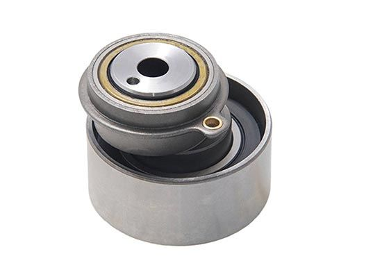 FS01-12-700A Tensioner Bearings